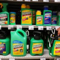 Pesticide Roundup